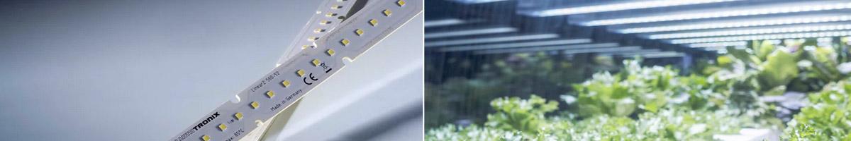 Benzi LED LinearZ pentru iluminat optim in cresterea plantelor (Horticultură si Acvaristica)